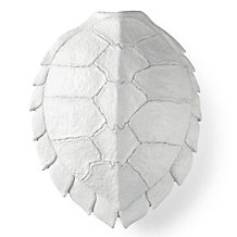 Turtle Shell Plaque