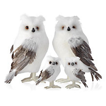 Ice Owl - Set of 2