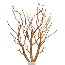 Branch - Set of 3