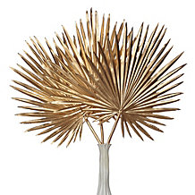 Palm Stem - Set of 3