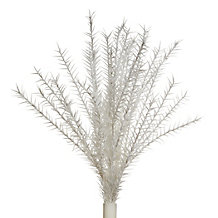 Spiked Branch - Set of 3