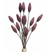 Bud Branch - Set of 3