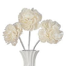 Shell Flower - Set of 3