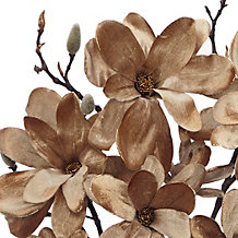 Velvet Magnolia - Set of 3
