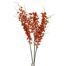 Large Dancing Orchid - Set of 3