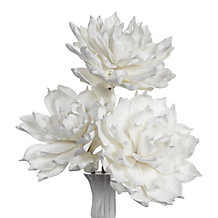 Large Mum - Set of 3 - White