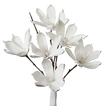 Magnolia Stem - Set of 3