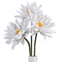 Lotus Flower Stem - Set of 3