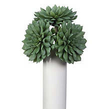 Succulent Flower - Set of 3