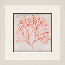 Watercolor Pink Coral