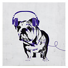 Music Love Bull Dog