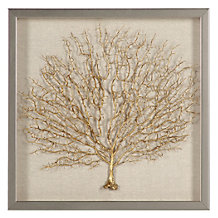 Golden Sea Fan Shadowbox