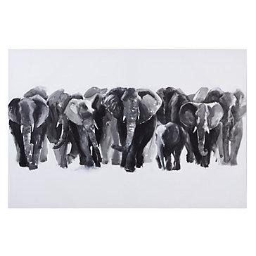 Gigantic Elephants  Gi...