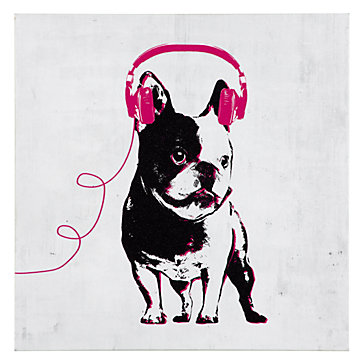 Music Love French Bull Dog