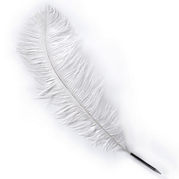 Ostrich Feather Pen  Books Z Gallerie Ostrich Feathers