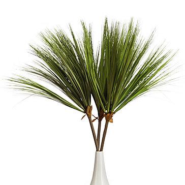 Papyrus Stem - Set of 3