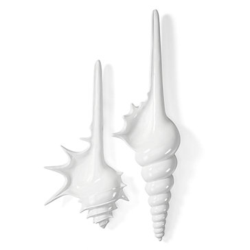 Shell Plaques - White
