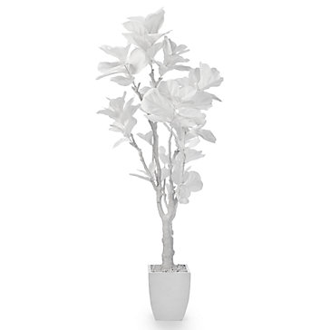 White Fiddle Leaf Tree