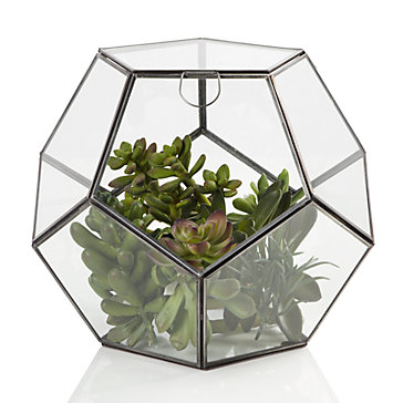 Zinc Terrarium