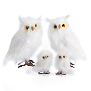 White Feathered Owls - Set of 2