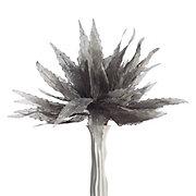 Linen Agave Plant - Set of 3
