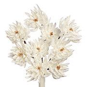 Peony Branch - Set of 3