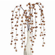 Pine Willow - Set of 3