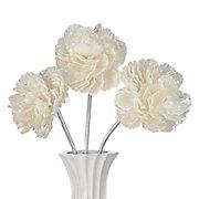 Shell Flower - Set of 3