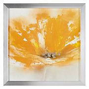 Wild Orange 1