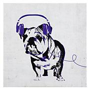 Music Love Bull Dog