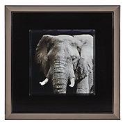 Elephant In Slate