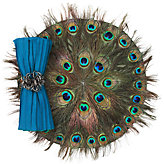 Peacock Feather Placemat - Set of 4
