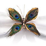 Peacock Butterfly Napkin Ring - Set of 4