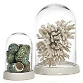 Glass Bell Jar - White