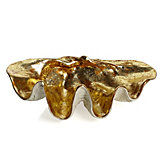 Atlantis Clam Shell - Gold