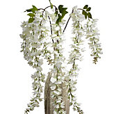 Wisteria Spray - Set of 3 - White