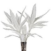 Seaweed Stems - Set of 3 - White