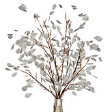 Silver Dollar Branch - Set of 3 - White