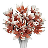 Magnolia Stem - Set of 3 - Burnt Orange