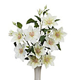 Clematis Spray - Set of 3