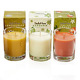 Stella Mare Scented Candles