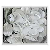 Georgia O'Keeffe - The White Calico Flower