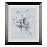 Silvery Blue Tulips 2