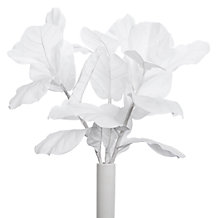 Fiddle Leaf Spray - Set of 3