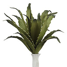 Mini Agave Plant - Set of 3