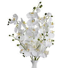 Faux Phalaenopsis Spray - Set of 3