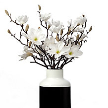 Sauser Magnolia - Set of 3