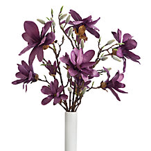 Magnolia Spray - Set of 3
