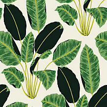 Banana Leaf Wallpaper