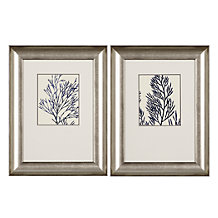 Ink Blue Coral - Set of 2